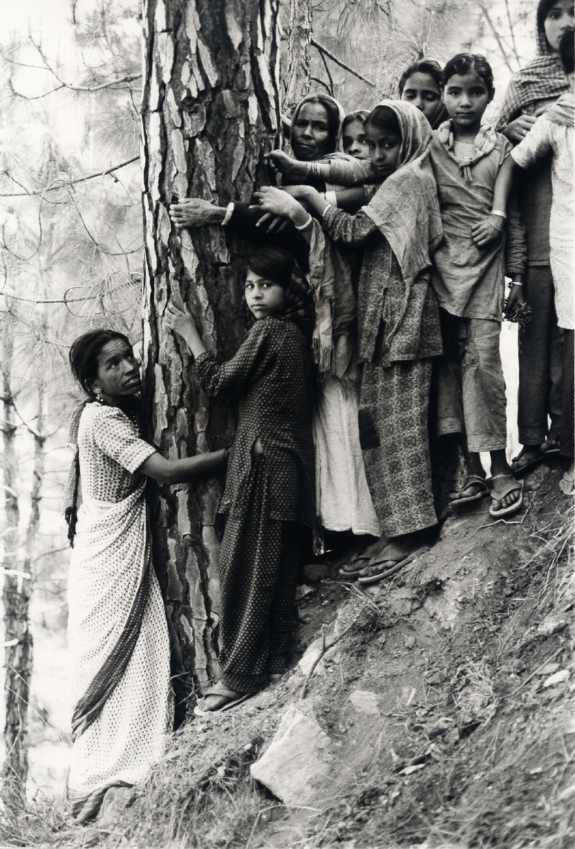 chipko moment Article on the `chipko movement` or `chipko andolan` was a forest conservation movement in india brief history, download pdf.