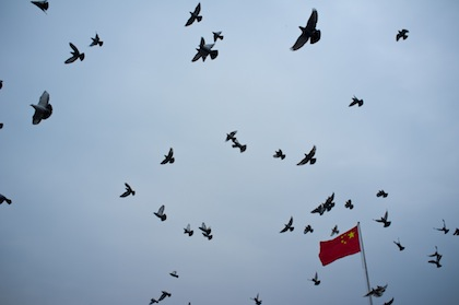 Doves released over the Nanjing Massacre Memorial during the 75th anniversary of the Rape of Nanjing. (WNV / Brady Ng)