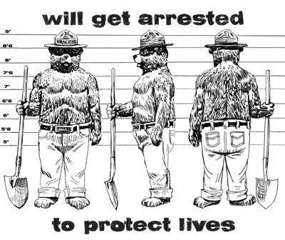 Anti-fracking Smokey the Bear T-shirt design. (WePay/Lopi LaRoe)