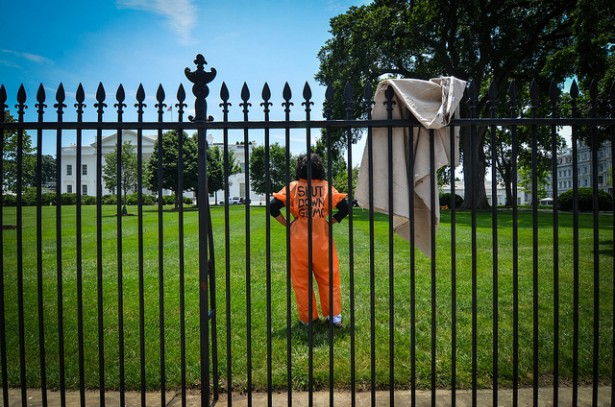 Diane Wilson just moments after scaling the White House fence and moments before being arrested. (Flickr / Witness Against Torture)