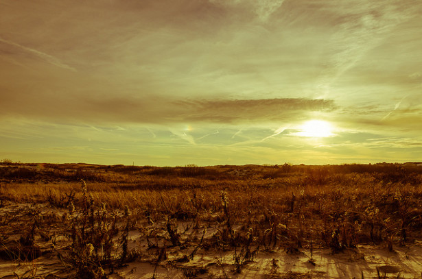 Barren field (Flickr / Jonathan Grado)