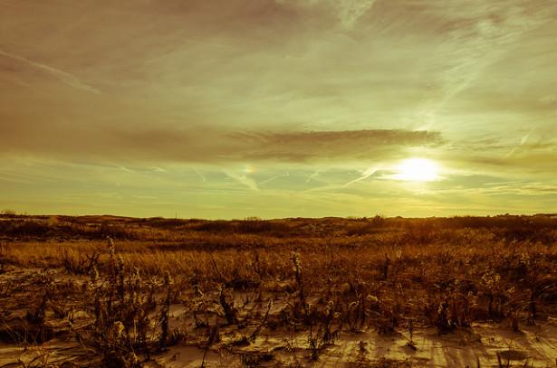 Barren field (Flickr / Jonathan Grado)
