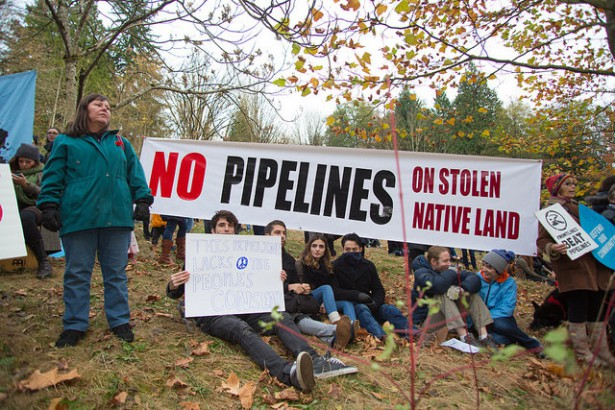 Protesters rally against the proposed Kinder Morgan oil pipeline on Burnaby Mountain in British Columbia on November 17. (Flickr / Mark Klotz)