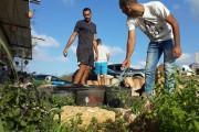 Samer Toume (left) tends to a garden. (Facebook / Iqrit)