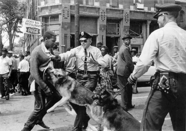 Bill Hudson's image of Parker High School student Walter Gadsden being attacked by dogs was published in The New York Times on May 4, 1963. (Wikipedia)