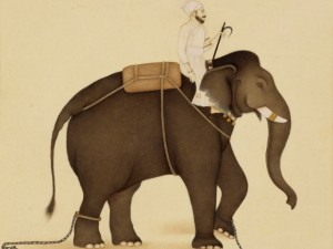 The intuitive mind is like an elephant and the rational mind is like its rider. (Wikipedia)