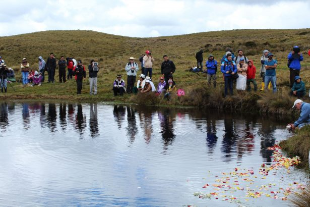 "People gathering along Kimsacocha Lagoon for a gratitude and spiritual ritual, commemorating the symbolic declaration of the province's moorlands as ""mining-free territories."" (WNV/Andrea Ávila)"